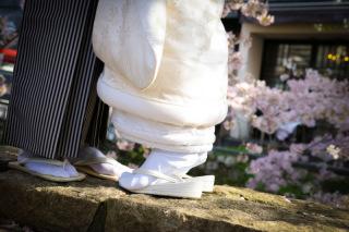 124784_京都_京都×ロケーション(桜)02