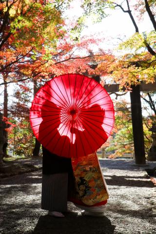 278198_京都_京都×ロケーション(桜)①