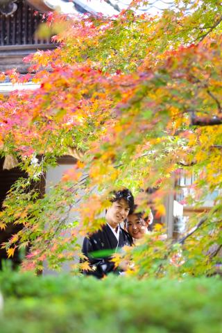 278170_京都_京都×ロケーション(桜)①