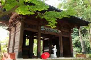 211542_神奈川_夏の写真(7月下旬・8月)