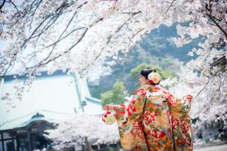 169932_神奈川_春の写真(3月・4月中旬)桜のシーズン
