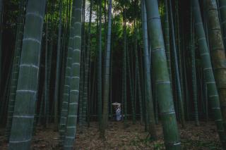 131586_神奈川_ロケーション撮影