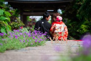 211535_神奈川_梅雨・初夏の写真(6月中旬・7月中旬)紫陽花のシーズン