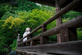 213545_神奈川_夏の写真(7月下旬・8月)