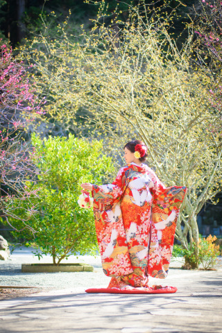 191272_神奈川_春の写真(3月・4月中旬)桜のシーズン