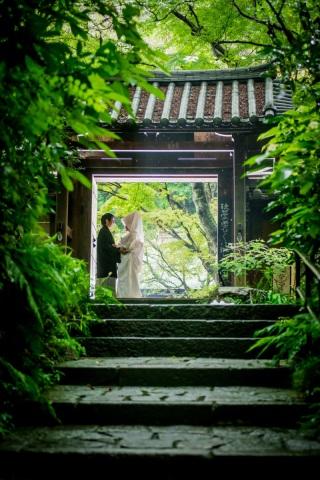 213544_神奈川_夏の写真(7月下旬・8月)