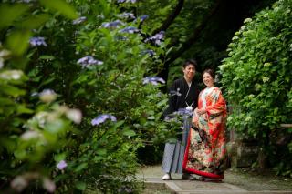 211532_神奈川_梅雨・初夏の写真(6月中旬・7月中旬)紫陽花のシーズン