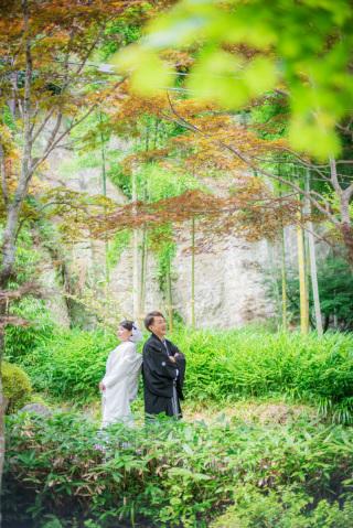 158536_神奈川_夏の写真(7月下旬・8月)