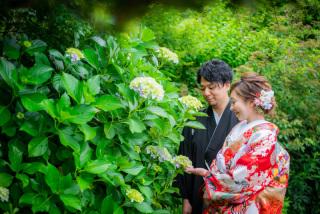 211533_神奈川_梅雨・初夏の写真(6月中旬・7月中旬)紫陽花のシーズン