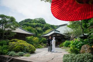 158532_神奈川_夏の写真(7月下旬・8月)