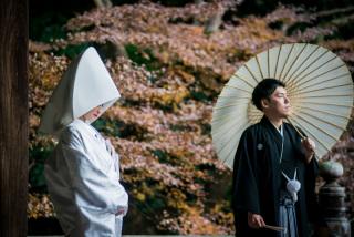186868_神奈川_早春の時期(1月・2月・3月前半)