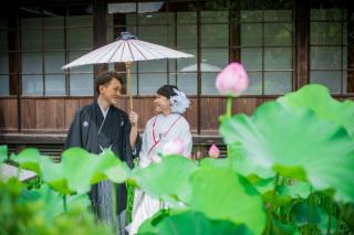158533_神奈川_夏の写真(7月下旬・8月)