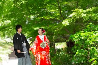 211550_神奈川_夏の写真(7月下旬・8月)