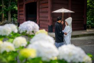 211531_神奈川_梅雨・初夏の写真(6月中旬・7月中旬)紫陽花のシーズン
