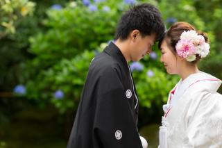 158535_神奈川_夏の写真(7月下旬・8月)