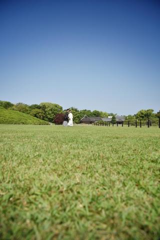 179525_岡山_緑
