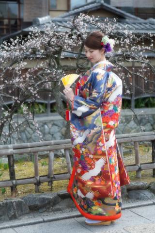 154273_京都_桜と梅の祇園