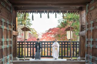 330421_京都_神社仏閣