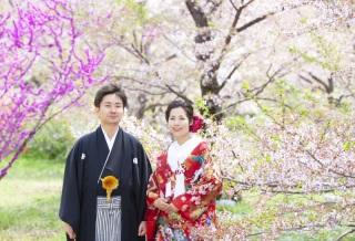 186681_京都_春 ロケーションフォト