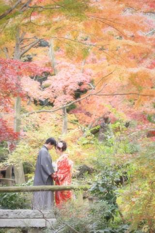 144277_神奈川_和装ロケーション・秋冬~autumn・winter~