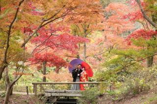 183029_神奈川_和装ロケーション・秋冬~autumn・winter~