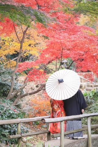 144282_神奈川_和装ロケーション・秋冬~autumn・winter~