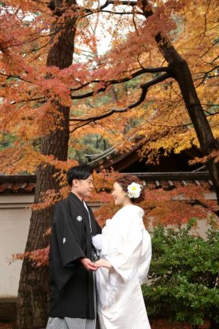 246842_神奈川_和装ロケーション・秋冬~autumn・winter~
