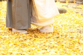 183030_神奈川_和装ロケーション・秋冬~autumn・winter~