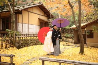 183032_神奈川_和装ロケーション・秋冬~autumn・winter~