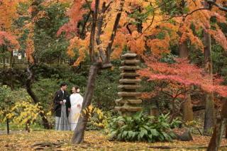 246846_神奈川_和装ロケーション・秋冬~autumn・winter~