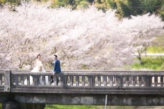 190273_静岡_Best shot