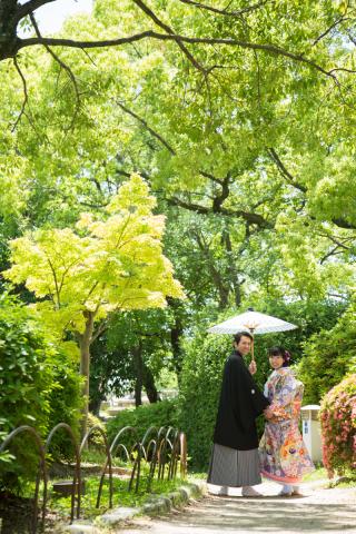 237729_大阪_summer ~ ナチュラルフォト~