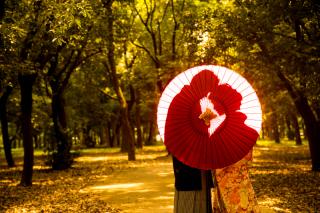 234059_大阪_autumn~秋フォト~