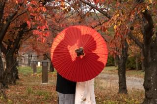 243374_大阪_autumn~秋フォト~