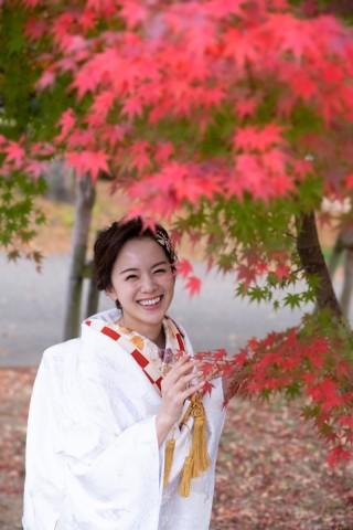 243379_大阪_autumn~秋フォト~