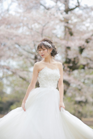 306721_東京_桜・梅