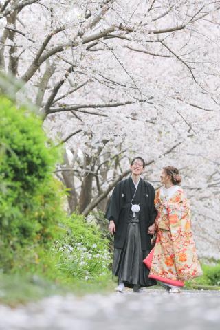 306703_東京_桜・梅