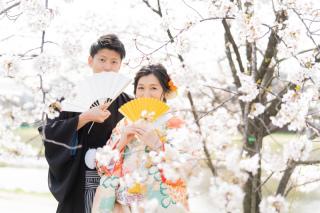 330374_京都_桜ロケーション