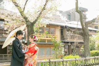 330377_京都_桜ロケーション