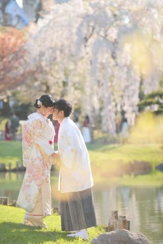 244924_北海道_【桜ロケフォト-春spring】GWに見頃を迎える日本のお花