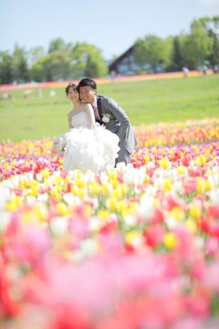 244894_北海道_【チューリップ-春spring】カラフルなお花の中で楽しく撮影