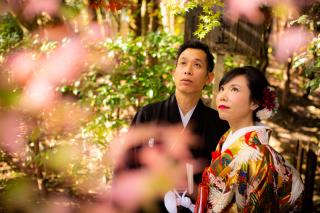 242806_京都_祇園・嵐山・大阪1