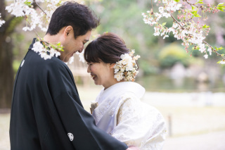 350136_東京_和装 庭園撮影