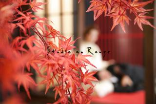 172899_大阪_和庭園