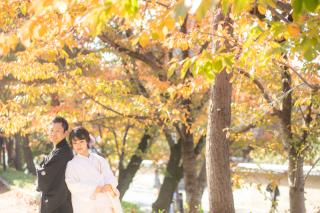 272917_京都_秋撮影