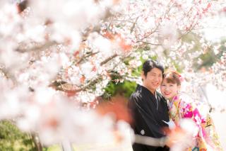 272855_京都_春撮影