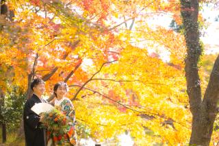 272906_京都_秋撮影