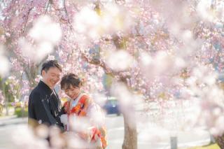 272857_京都_春撮影