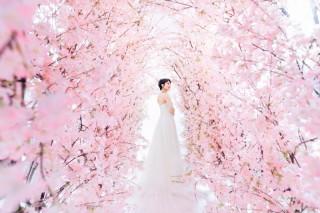 234757_東京_LUMINOUS tokyo Photo Gallery 01