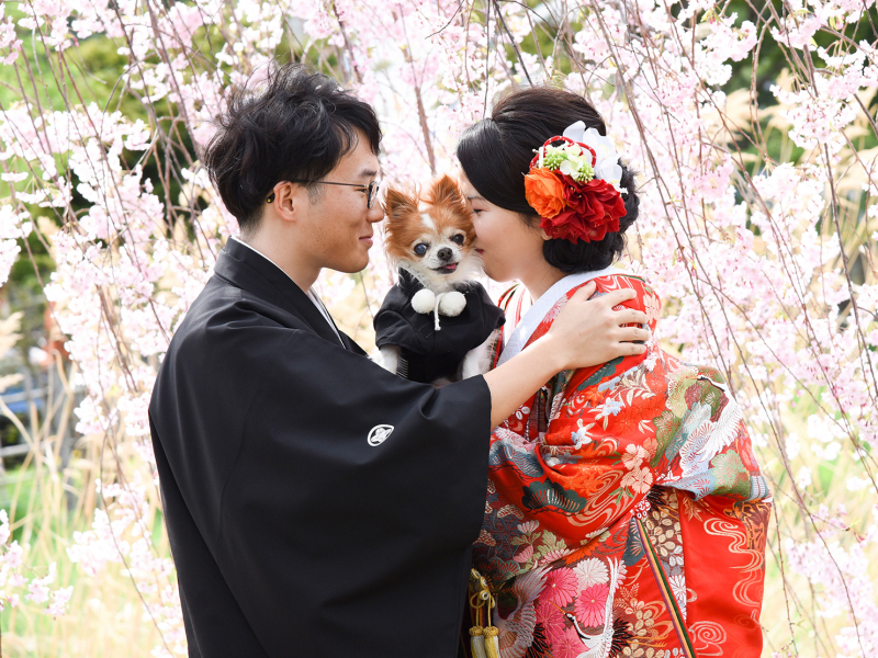 大和田写真館_トップ画像5